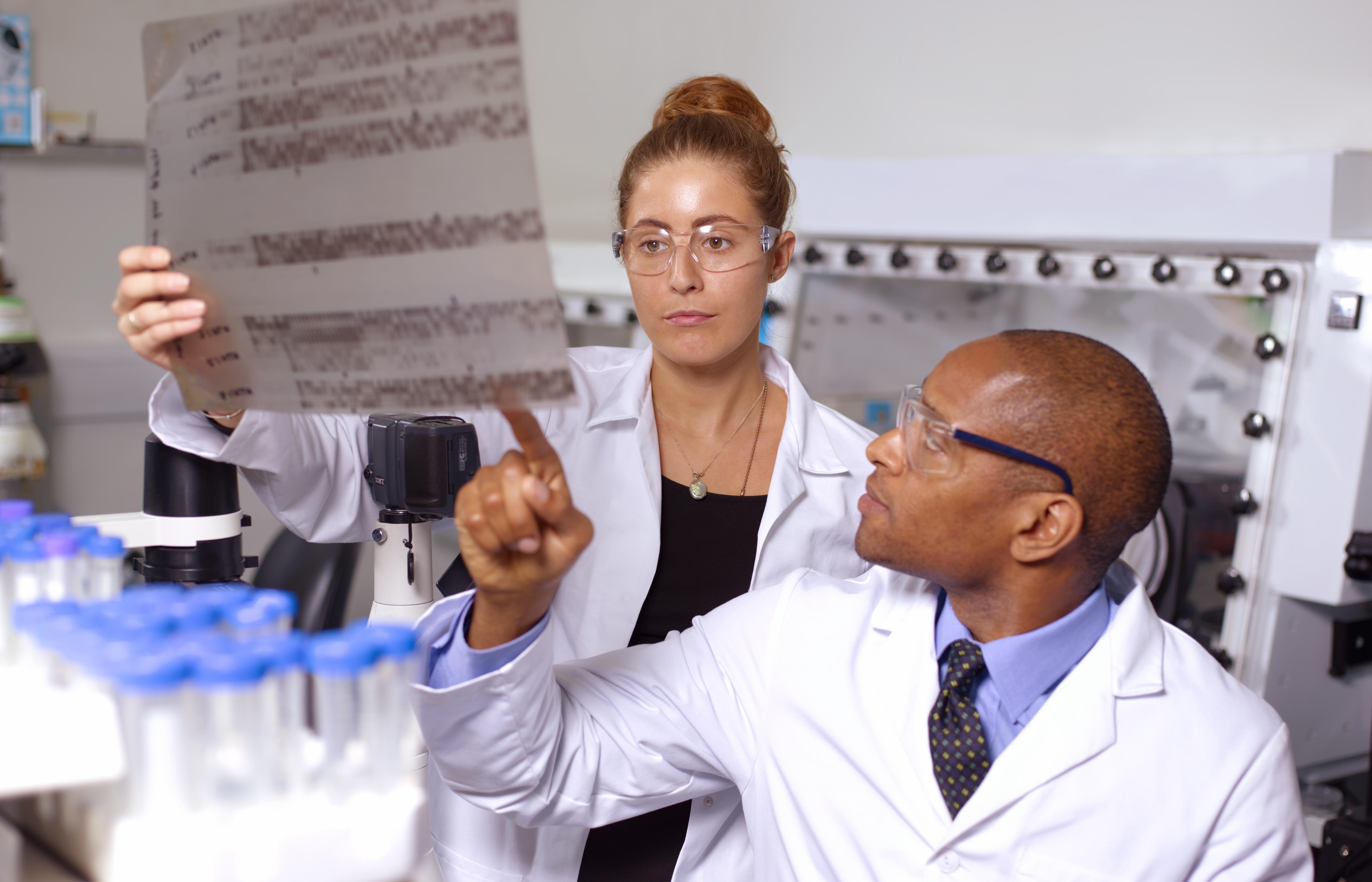 Doctors examining DNA sequencing gel