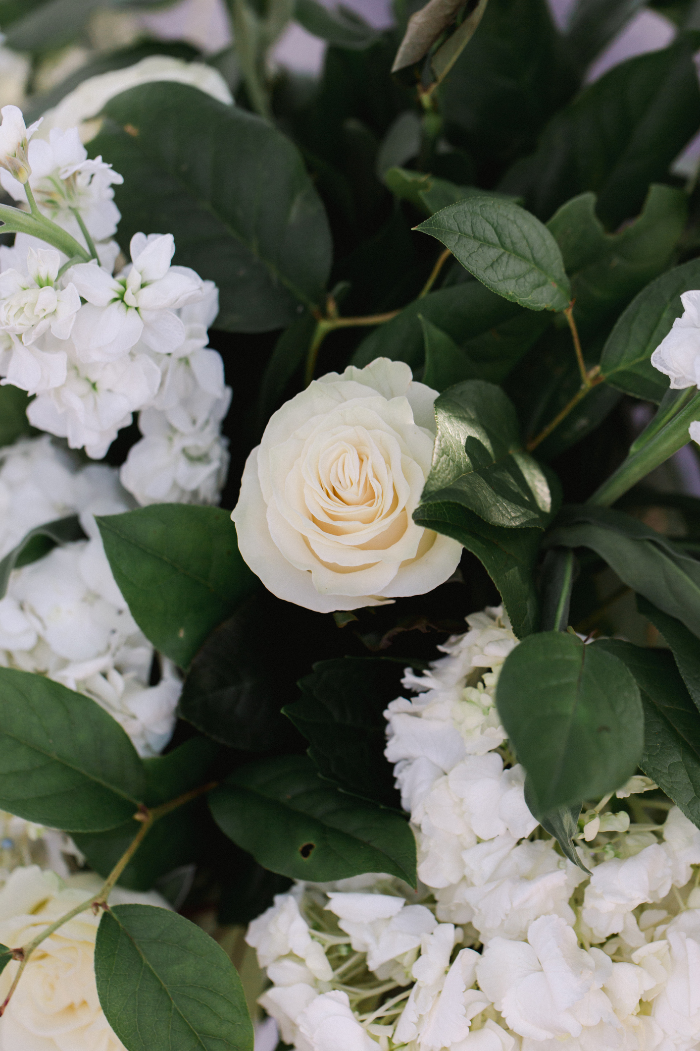 Garden Wedding Details of White Roses and green leaves close up