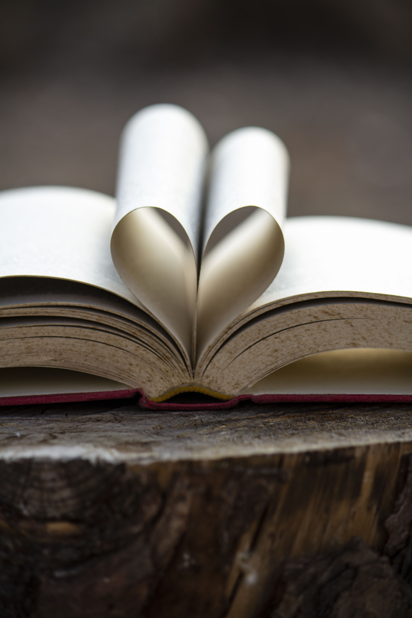 A heart for reading