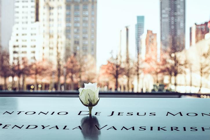 White rose in September 11 Memorial